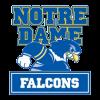 Notre Dame College Falcons